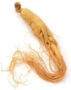 ginseng for ed